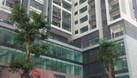 Cần bán căn hộ 2 tỷ, trung tâm phố Duy Tân, ở ngay, nội thất đầy đủ (ảnh 5)