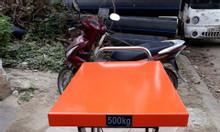 Xe nâng chậu cảnh - xe nâng mặt bàn Quảng Nam
