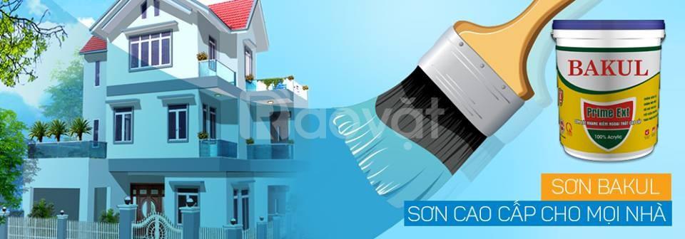 Tuyển nhân viên kinh doanh sơn nước