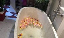 Bồn tắm đẹp WF-T9001