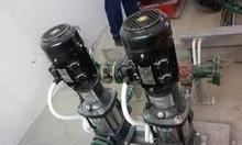 Báo giá máy bơm nước nóng, bơm tăng áp trục đứng Ebara 2