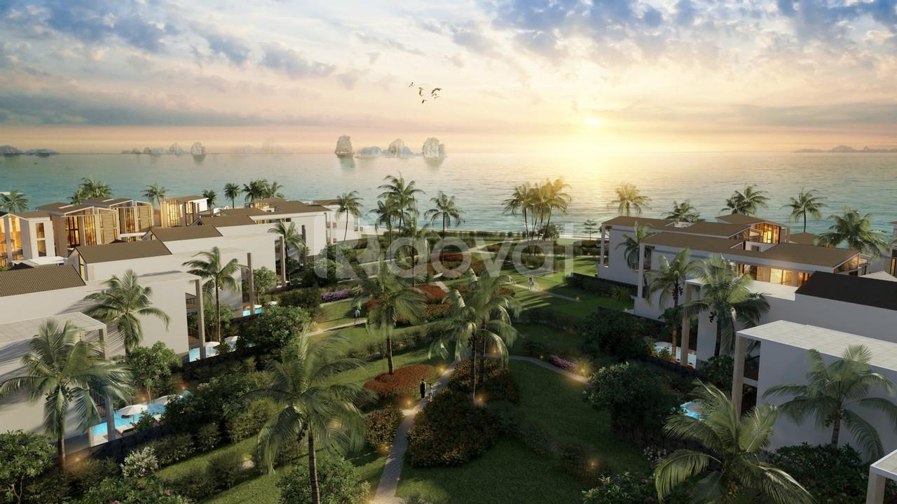 Nhà hàng 300m2 gần mặt biển Bãi Cháy, sinh lời hơn 20%/năm (ảnh 3)
