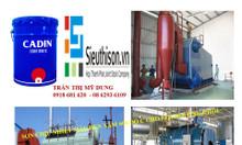 Công ty cung cấp sơn chịu nhiệt 1000 độ C Cadin dây chuyền sản xuất