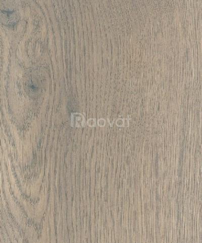 Sàn gỗ Dĩ An
