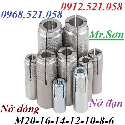 Nở đóng (tắc kê đóng) thép mạ M14,M16,M20 có nở đóng inox 304