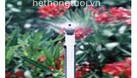 Tưới phun sương, vòi tưới phun sương, tưới phun sương cho nấm (ảnh 4)