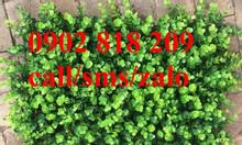 Cỏ trang trí tường, cỏ dán tường, tấm cỏ treo tường