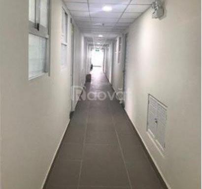 Căn hộ chung cư Ehomes quận 9 cho thuê (ảnh 1)