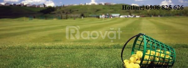 Giỏ đựng bóng golf, rổ đựng banh golf