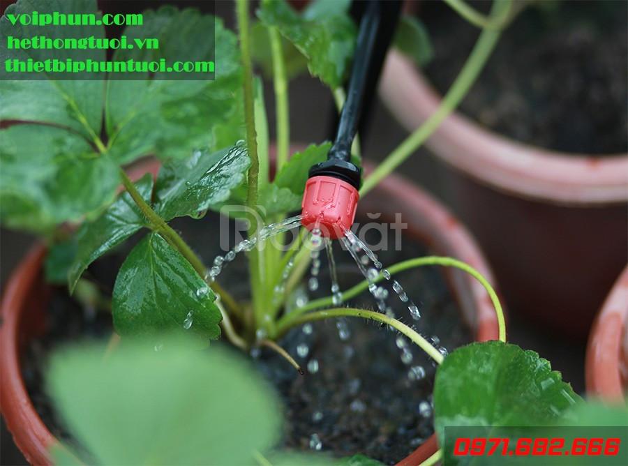 Tưới nhỏ giọt nông nghiệp, tưới nhỏ giọt Hà Nội, tưới nhỏ giọt 8 tia (ảnh 4)