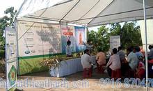 Nhà bạt thiên thanh cùng nhà bạt hội chợ nông nghiệp quận 12