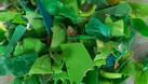Cung cấp nhựa phế thải (ảnh 3)