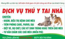 Khám chữa bệnh cho thú cưng, tư vấn và điều trị vật nuôi