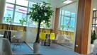 Cho thuê văn phòng 120m2 phố Hoàng Quốc Việt, Cầu Giấy giá rẻ (ảnh 3)