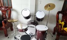 Bán bộ trống đánh tay jazz drum lazer giá rẻ