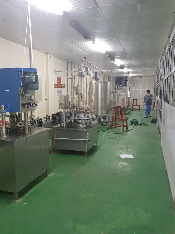 Cần đầu tư vốn sản xuất sữa macca sữa thực vật
