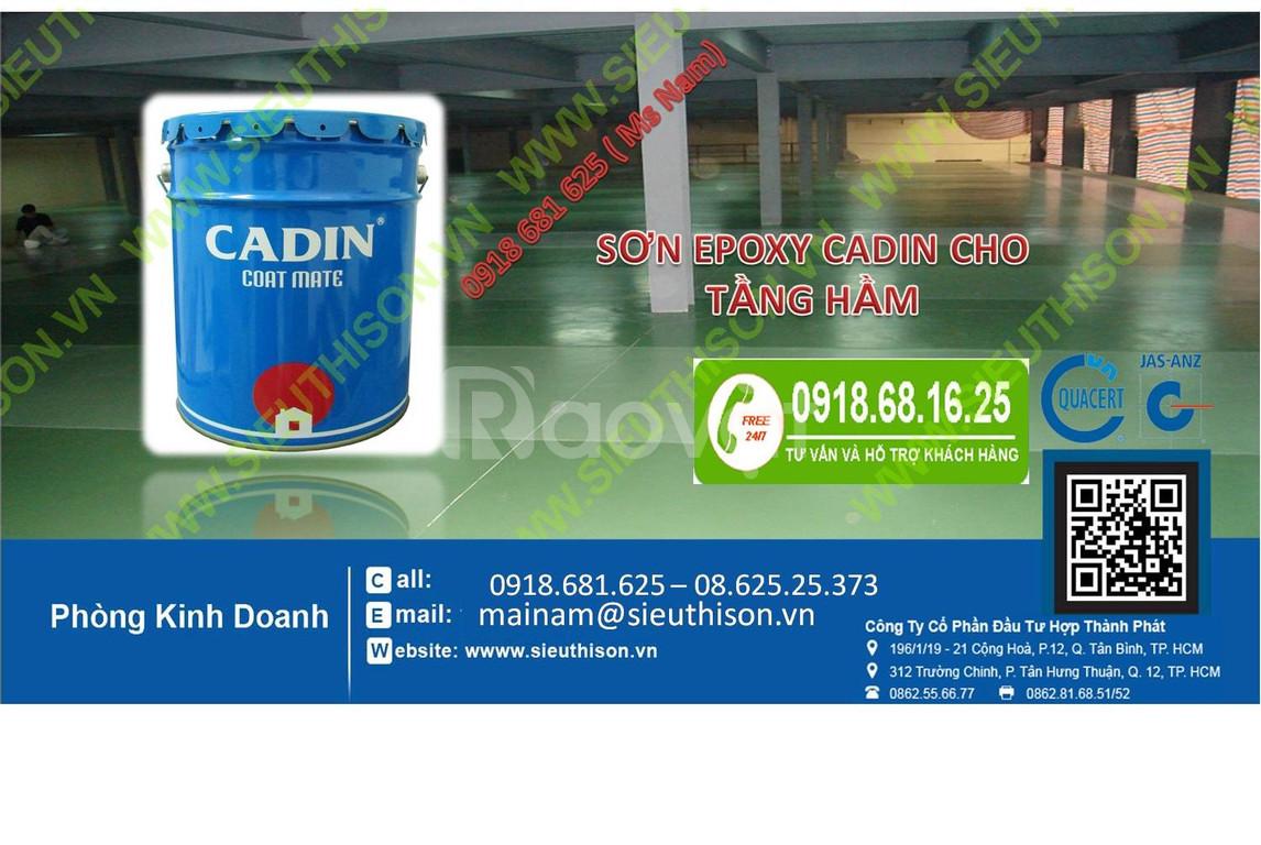 Đại lý bán sơn Epoxy Cadin chống axit giá rẻ tại Hồ Chí Minh (ảnh 4)