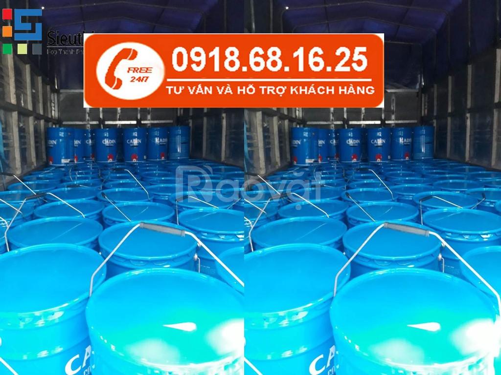 Đại lý bán sơn Epoxy Cadin chống axit giá rẻ tại Hồ Chí Minh (ảnh 3)