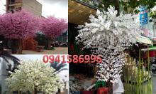 Cây xanh nhựa trang trí, cây bàng Singapore giả trang trí, cây hoa đào