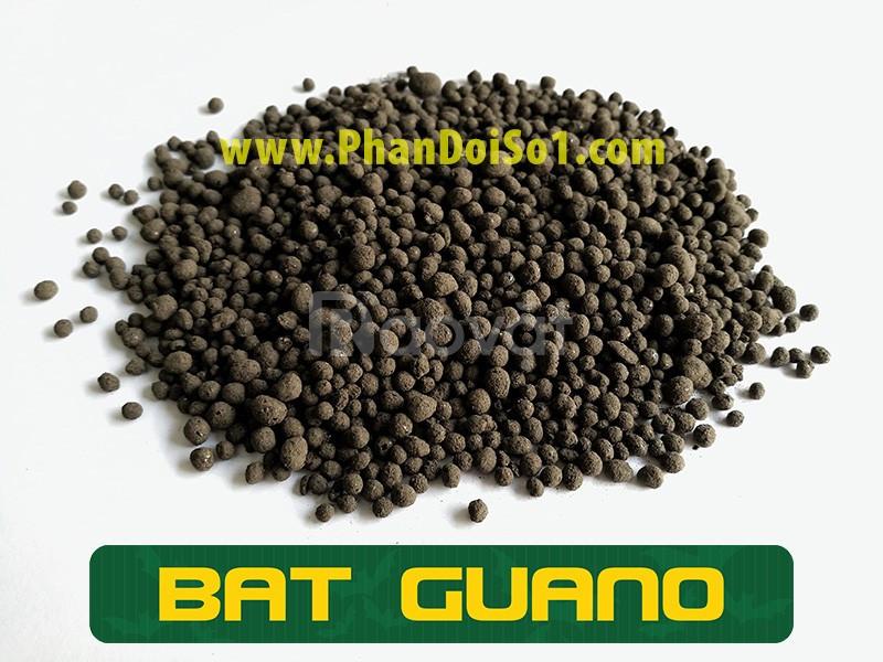 Phân dơi hữu cơ Bat Guano - túi 1kg dùng bón lan, trồng hoa hồng (ảnh 2)