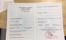 Giấy phép lao động cho người nước ngoài tại Việt Nam