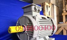 Động cơ motor điện giá cạnh tranh