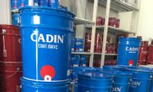 Chuyên cung cấp sơn dầu Cadin giá rẻ cho công trình