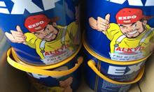 Sơn dầu Expo vàng kem 303 3kg