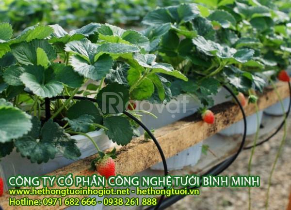 Thiết bị tưới nhỏ giọt, thiết bị tưới nhỏ giọt tại Hà Nội