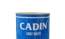 Sơn kẽm đa năng Cadin 2 in 1 chất lượng giá tốt cho sắt kẽm