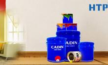 Đại lý sơn nước gốc dầu Cadin chống thấm tường ngoài nhà giá rẻ