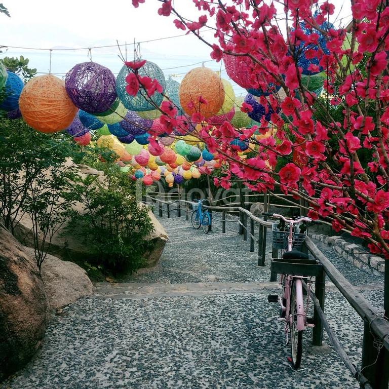 Voucher du lịch Nha Trang - giá rẻ không tưởng