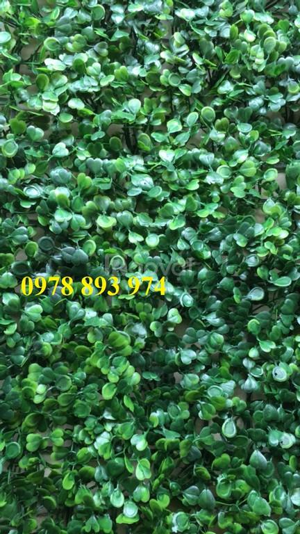 Cỏ nhựa trang trí tường, cỏ nhựa treo tường, cỏ nhân tạo dán tường