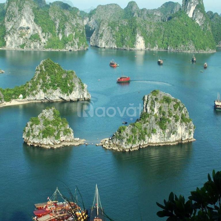 Cần tiền bán gấp lô đất biệt thự tại Quảng Ninh, view Vịnh Hạ Long (ảnh 7)