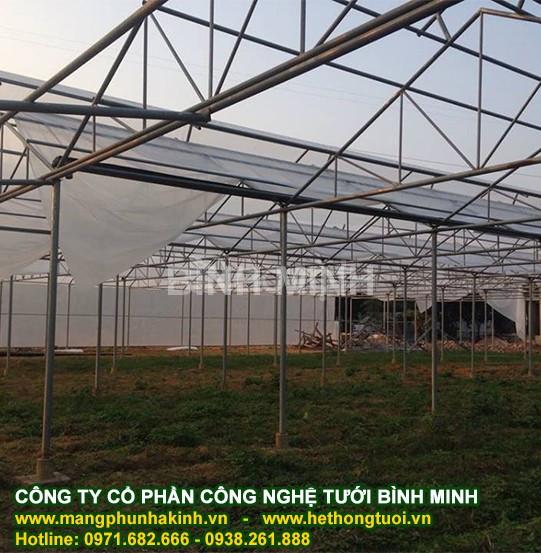 Có 1000m2 trồng rau sạch trong nhà lưới, công nghệ nhà màng