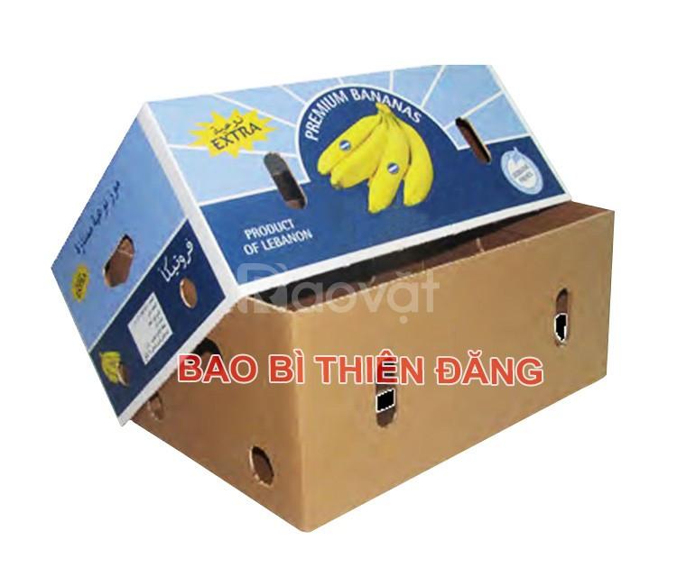Sản xuất thùng carton 3 lớp in Flexo giá rẻ tại TPHCM (ảnh 5)