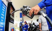 Cấp chứng chỉ xăng dầu, gas, khí dầu mỏ hóa lỏng 2018
