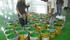 Cần mua sơn Đài Loan Rainbow giá tốt tại miền nam (ảnh 1)