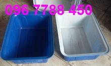 Bán thùng nhựa chữ nhật 2 lớp nuôi cá loại lớn