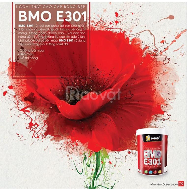 Sơn cao cấp ngoại thất Ezon BMO E301 (ảnh 3)