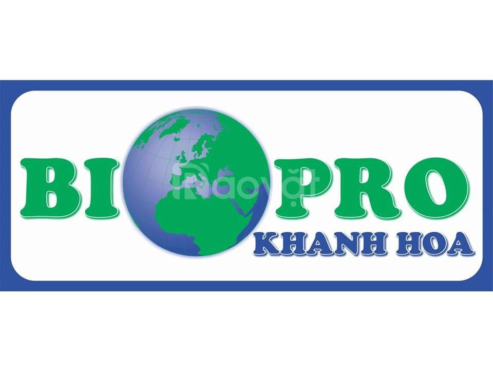 Bán men vi sinh xử lý nước và đáy ao tôm giống Biopro Khánh Hòa