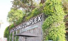 Chuyên thiết kế vườn tường cây thật, cây giả, tiểu cảnh sân vườn Đẵng