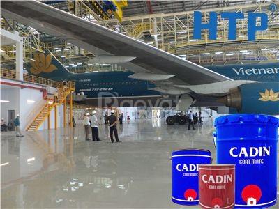 Tìm mua sơn dầu giá tốt cho công trình, sơn dầu Cadin giá tốt