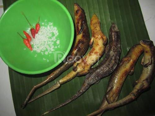 Rắn mối thịt 30 con/kg, cung cấp sỉ và lẻ tại TPHCM, BD, ĐN