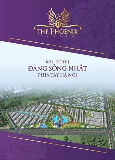 Bán đất biệt thự đồi thông - The Phoenix Garden (ảnh 5)
