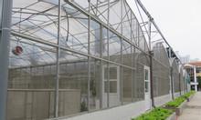 Nhà lưới bình minh, lưới chắn côn trùng bình minh