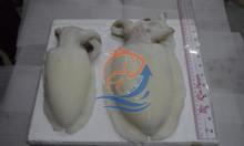 Tìm nhà phân phối mực nang - hải sản đông lạnh IQF an toàn chất lượng