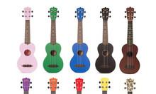 Bán đàn ukulele nhỏ gọn giá rẻ tại Bình Dương
