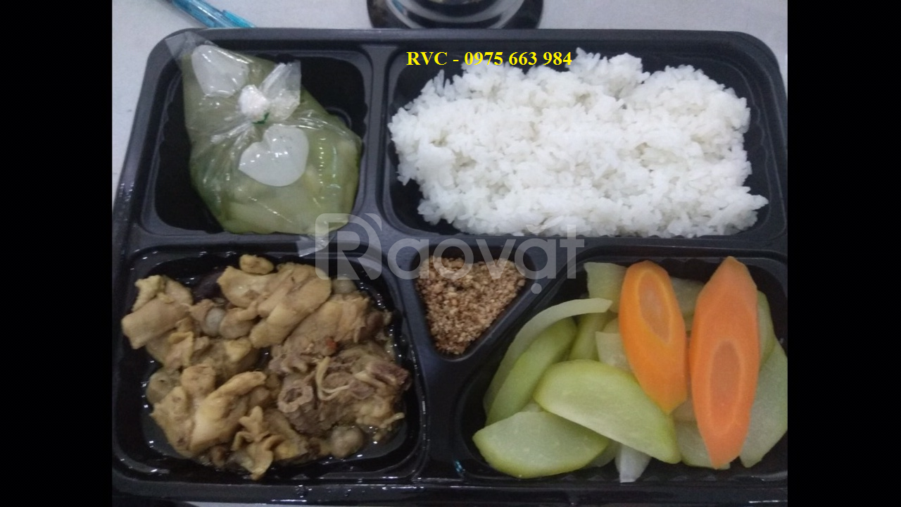 Giá hộp nhựa đựng cơm dùng một lần