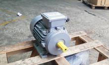 Động cơ điện mô tơ Elektrim EM80B-4 3 pha 1 HP hàng Singapore